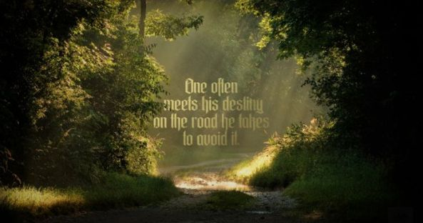 a_fresh_selection_of_interesting_quotes_and_wise_advice